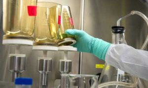 Top 5 Synthetic Urine Kits