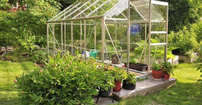 Importance of greenhouse